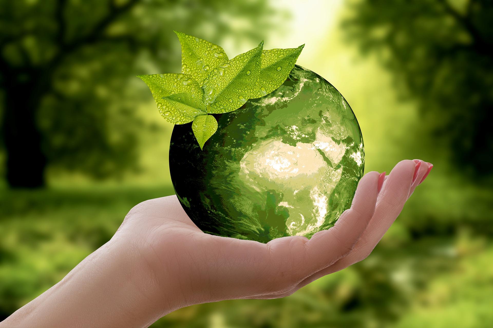 SéMás Consultoría: especialistas en optimizar empresas desde un punto de vista económico, social y medioambiental